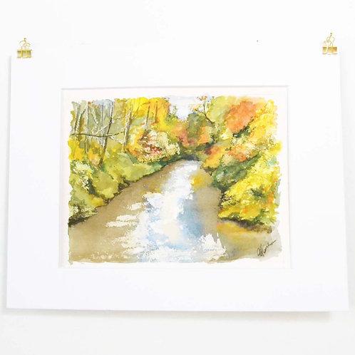 11x14, Autumn Stream