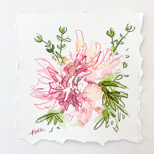 5x5, Spider Lily in Pink