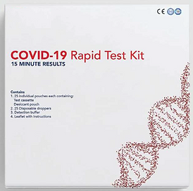 Covid Test Kit.png