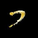 logo guide de la voyance.png