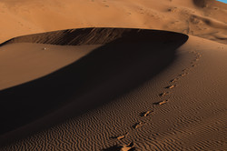 The Desert Curves