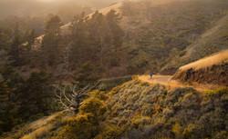 Into the ...San Francisco