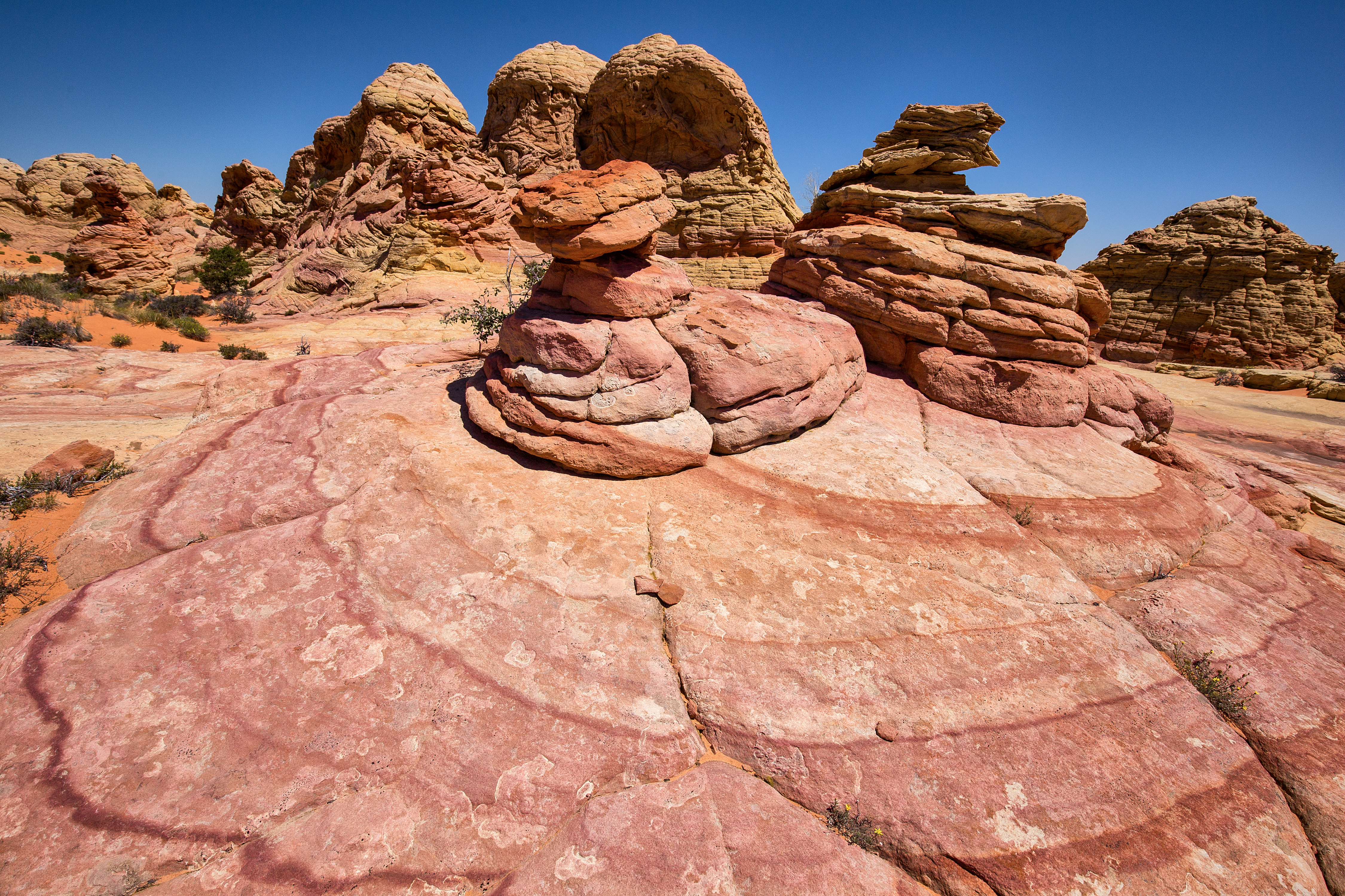 South Coyote Buttes Red