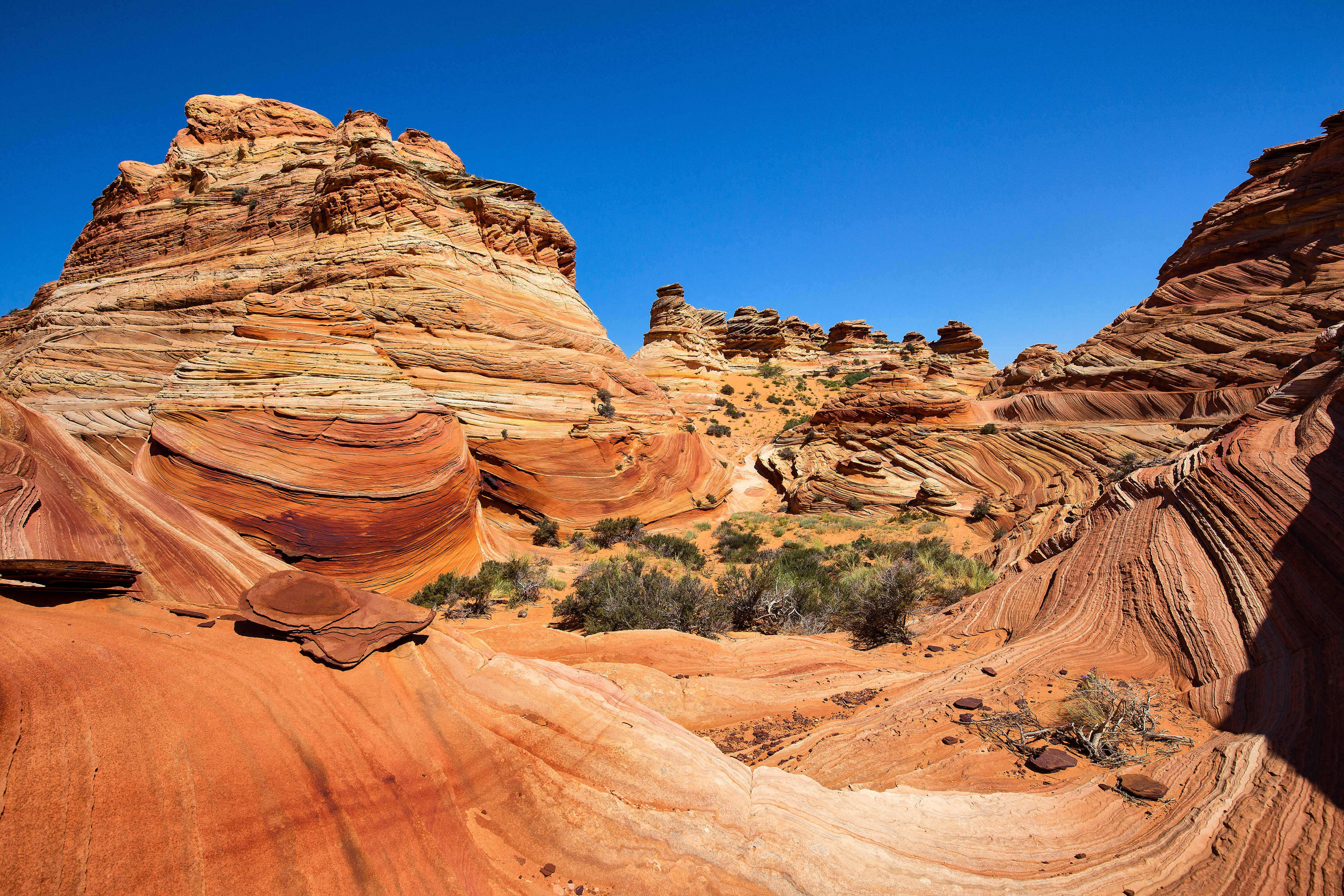 South Coyote Buttes 1