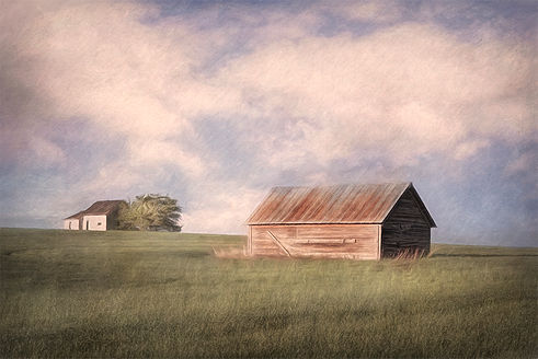 Squirrel House and Barn.jpg