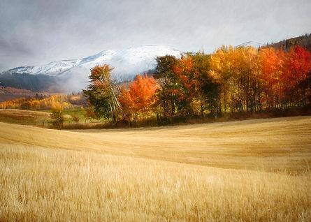 Autumn in Alta, Wyoming 5 x 7.jpg