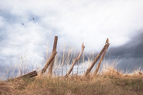 A Blustery Spring Day in Alta, Wyoming small.jpg