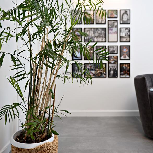 תמונות משפחה בסלון דירה ששופצה