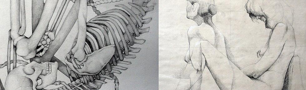 FRANJA dibujo anatomico copy.jpg