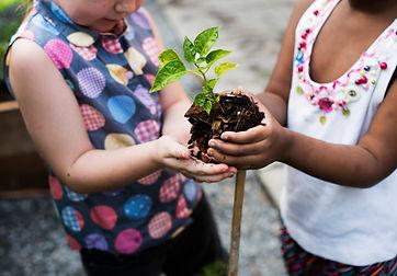 little-chilldren-planting_53876-58818.jpg
