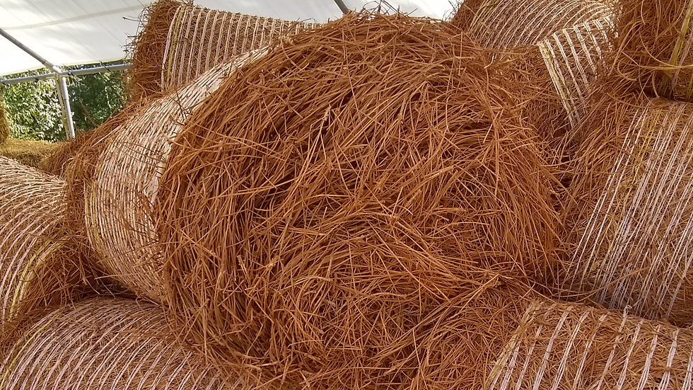 Red Dyed Pine Straw Round Bale
