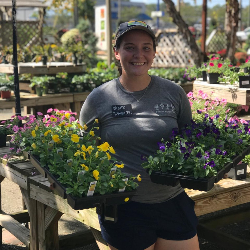Flats of Pansies and Violas are here!
