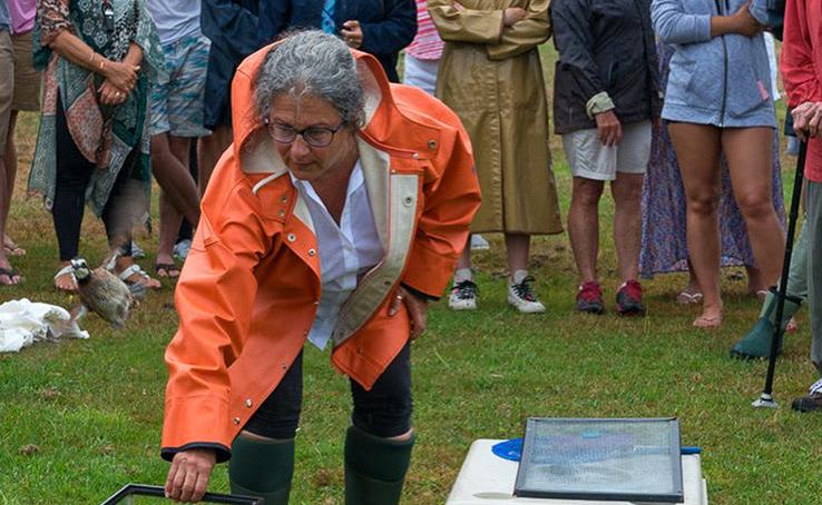 Jessica James Releaseing Quail
