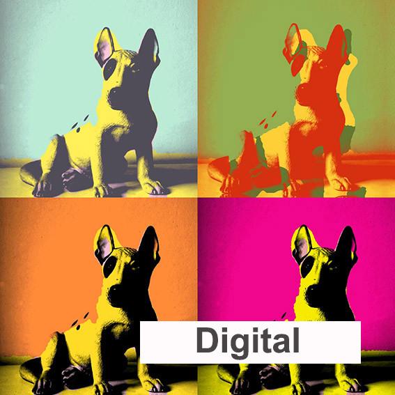 S Digital.jpg
