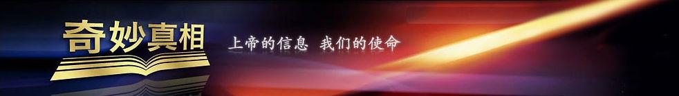 Chinese Website.jpg