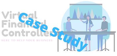 Virtual Financial Controller Case Study