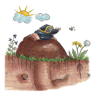 ©angelagstalter , mole illustration, animal illustration, kidslitart, character design, childrensbookillustration,