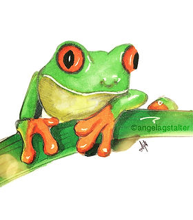 ©angelagstalter kidsillustration, childrensbookillustration, frog illustration