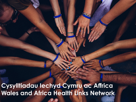 COVID19 Public Health Crisis: what could Welsh partnerships do?