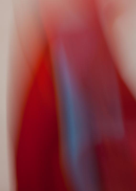 cloth 2.5.7.wix.png