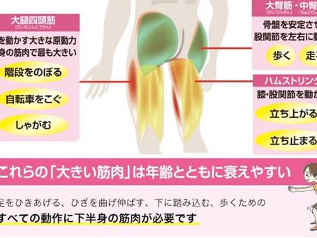 知っていましたか?若くても足腰が弱っている方が増えてます。
