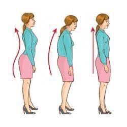 姿勢の正し方と基礎代謝の上げ方と骨盤と筋肉
