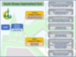 Org-Chart__edited.jpg
