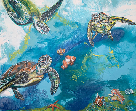 Where the Sea Turtles and Clownfish Play