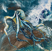 Deep Water Octopus