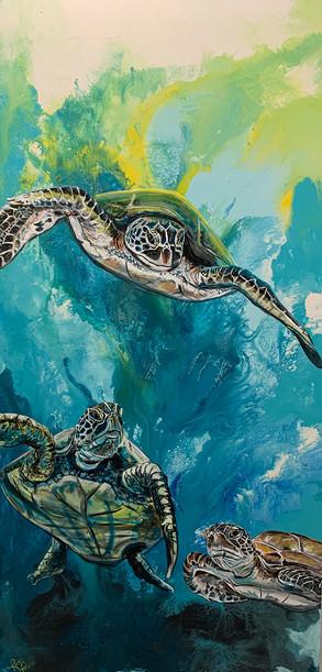 Three Sea Turtles.jpg