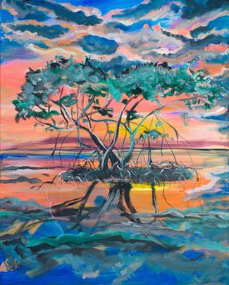 Mangrove Sunset 2.jpg