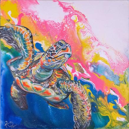 Electric Space Turtle 1.jpg