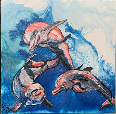 Three Frolicking Dolphins.JPG
