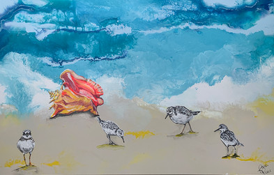 Sandpipers Playing