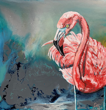 Solo Flamingo