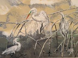 Birds on Mangroves.jpg