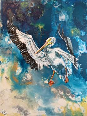 Stork_Web.jpg