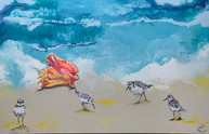 Sandpipers Playing.jpg