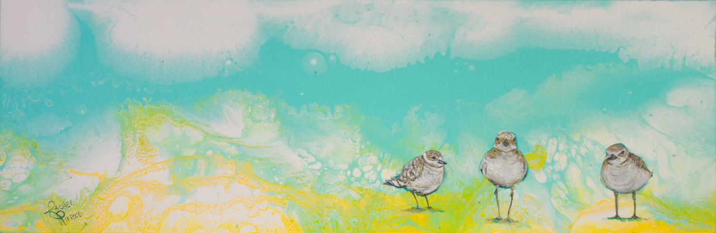 Three Little Birds Out on my Seashore.jp