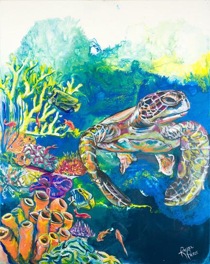 By the Coral Reef.jpg