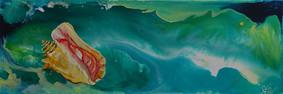 Shell in waves.jpg