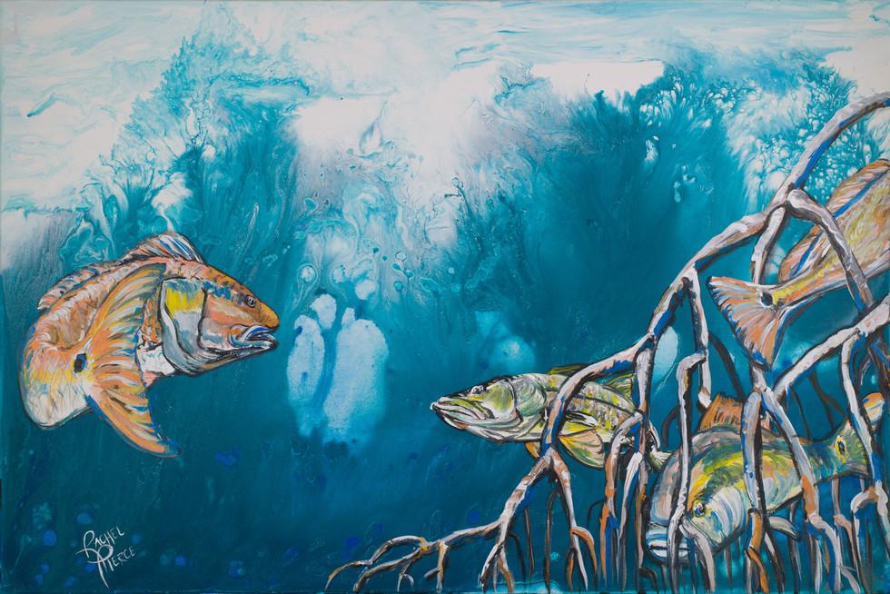 Redfish and Snook in Mangroves.jpg