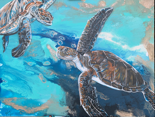 Turtle Freedom.jpg
