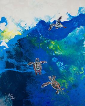 Hatchlings Swimming.jpg