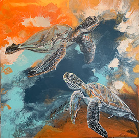 Turtles and red sky