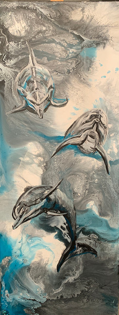 Dolphins In Wake 12x24