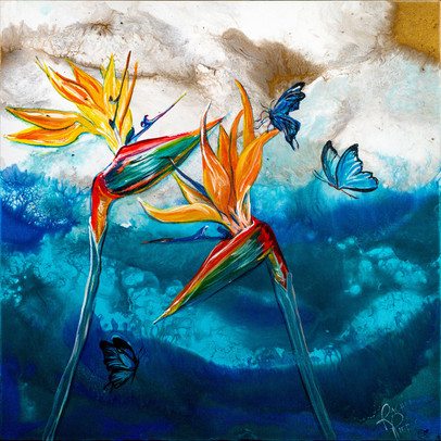 Birds of Paradise and Butterflies.jpg