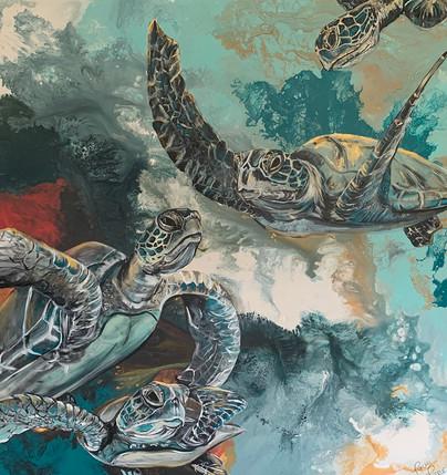Four Turtles 48x48