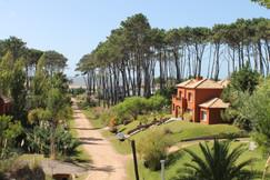 Vista Barrio privado Laguna Blanca, Manantiales
