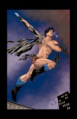Nightwing Illustration